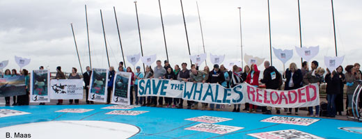 "Bei der World Whale Conference in Brighton wurde die Kooperation ""Save the Whales: Reloaded"" gegründet."